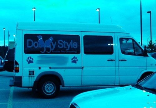 monday thru friday dogs grooming van business name