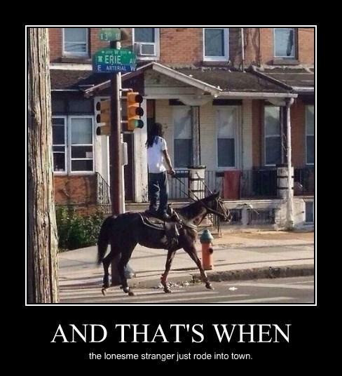 wtf cowboy funny horse - 8321223936