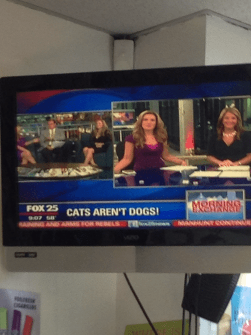news,pets,cable,fail nation,g rated