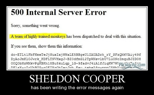 Sheldon Cooper,server,monkey,funny