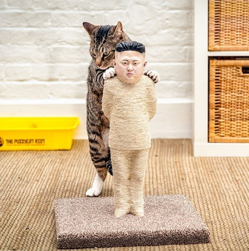 kim jong-un,shut up and take my money,scratching post,Cats