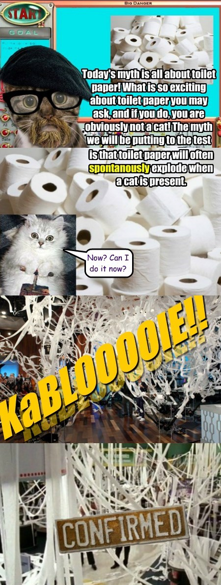 Font - Bio DANOER STAR GOAL Today's mythisallabout toilet paper!Whatis soexciting about toiletpaper you may ask,and if you do,youare obviouslynotacat!The myth we will be puttingto the test isthat toilet paper willoften spontanouslyexplode when acatispresent Now? Can I do it now? CONFIRMED