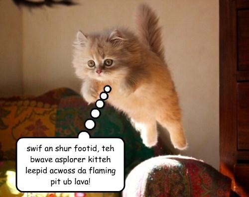 adventure Cats kitten - 8323315712