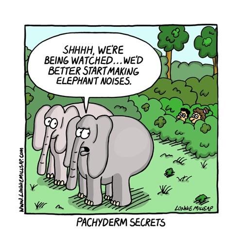 elephants noise web comics - 8323392768