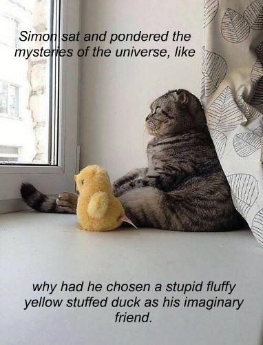 Simon sat and pondered the mysteries of the universe, like why had he chosen a stupid fluffy yellow stuffed duck as his imaginary friend.