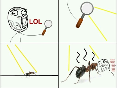 ants,lol,magnifying glass,rage