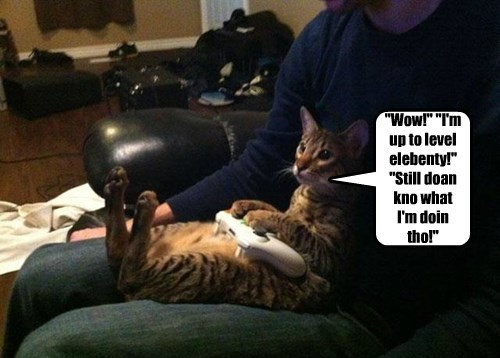 the internets,video games,Cats