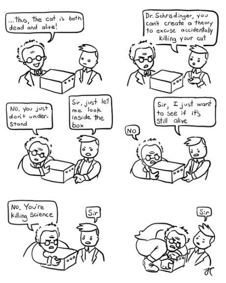 Cats science schrodingers-cat web comics - 8325895168