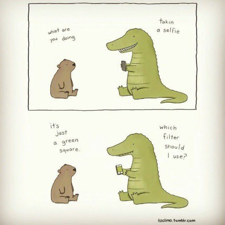 crocodile question web comics selfie - 8326946304