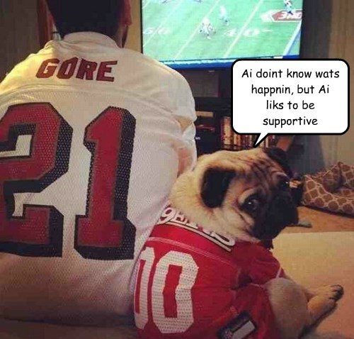 dogs,football,i have no idea what im doing