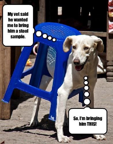 puns funny captions - 8327251200