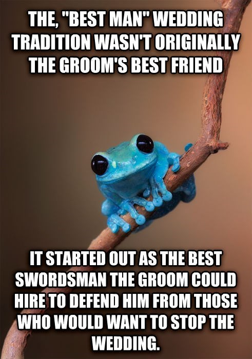 best man,marriage,weddings,small fact frog