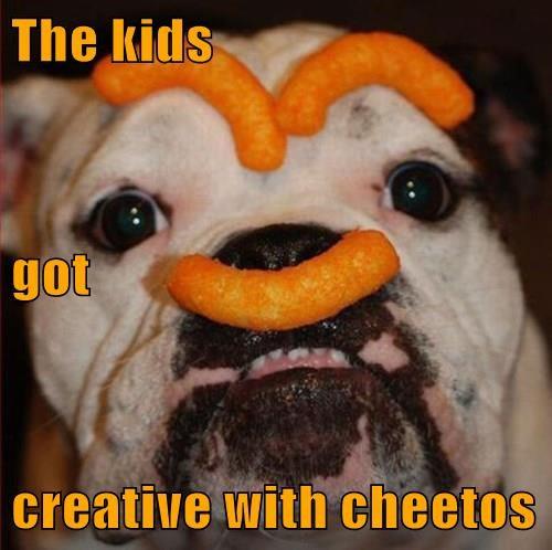 Cheezburger Image 8328022272