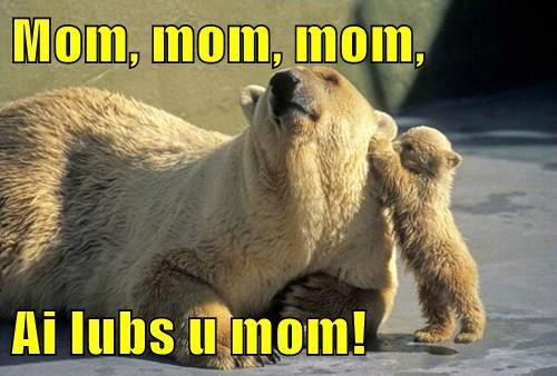 Mom, mom, mom,   Ai lubs u mom!