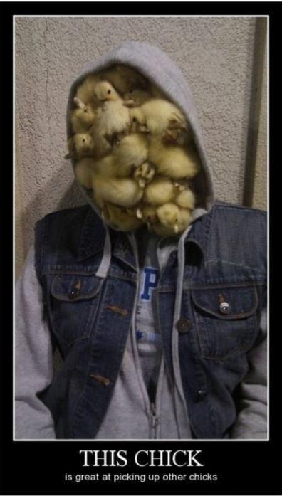cute chicks funny wtf - 8328186368