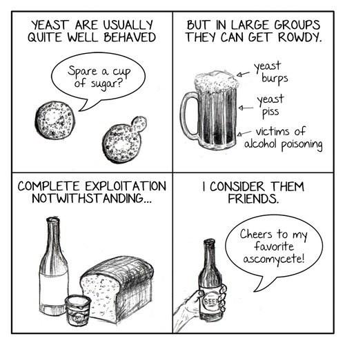 comics funny pee yeast - 8328568064