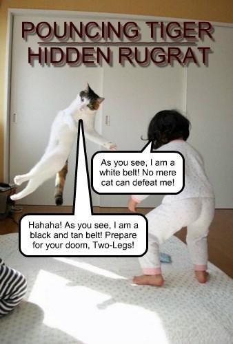 Cats kids ninja - 8328824576