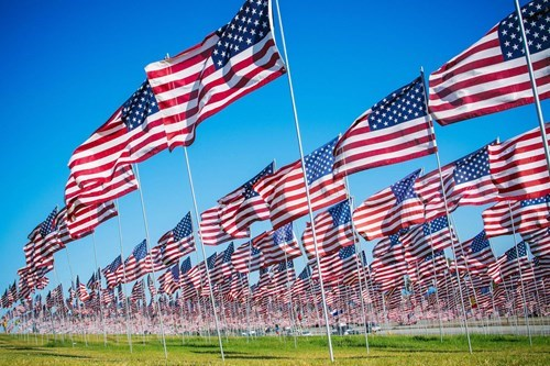 flag forest flags - 8329097728