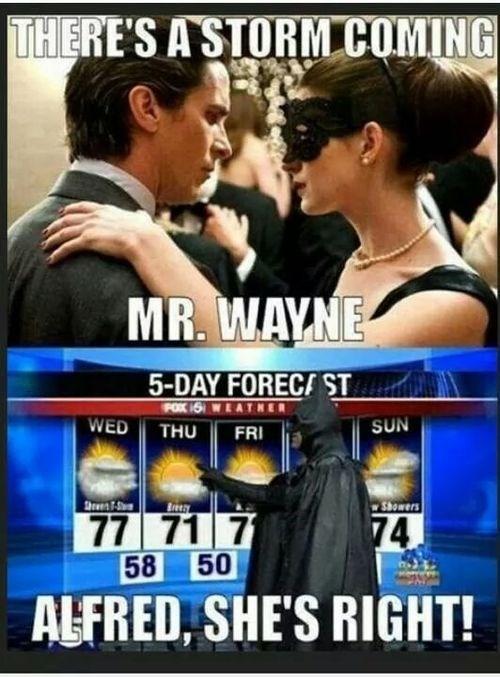 catwoman bruce wayne Meteorology - 8329172224