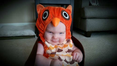 baby hat expression Owl parenting - 8329282560