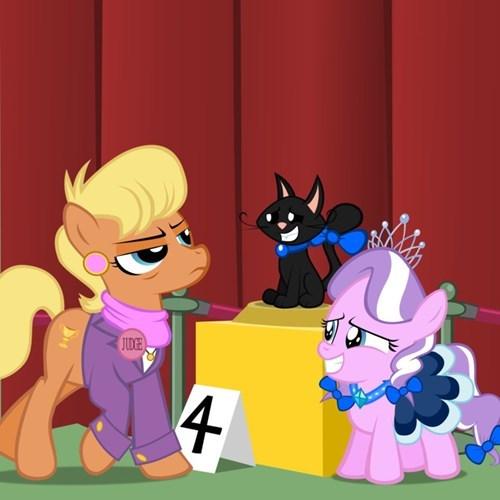 cat show diamond tiara Fan Art - 8329409280
