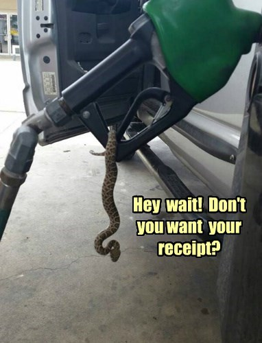 nope gasoline snake - 8329838336