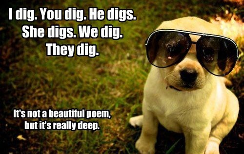 dogs poem dig deep caption - 8330001920