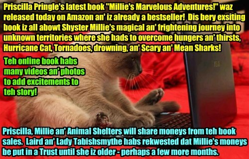 """Priscilla Pringle's latest book """"Millie's Marvelous Adventures!"""" waz released today on Amazon an' iz already a bestseller! Dis bery exsiting book iz all abowt Shyster Millie's magical an' frightening journey into unknown territories where she hads to overcome hungers an' thirsts, Hurricane Cat, Tornadoes, drowning, an' Scary an' Mean Sharks! Teh online book habs many videos an' photos to add excitements to teh story! Priscilla, Millie an' Animal Shelters will share moneys from teh book sales."""