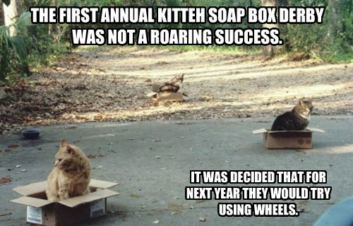THE FIRST ANNUAL KITTEH SOAP BOX DERBY WAS NOT A ROARING SUCCESS.