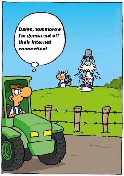 cows farming milk web comics - 8330786816