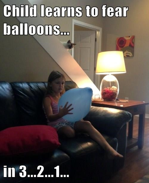 Cats,balloon,kids,fear
