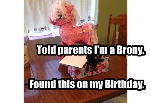 brony,birthday,parents