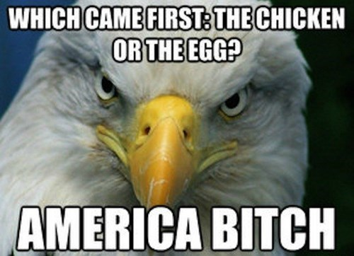 eggs eagles chicken murica - 8331711744