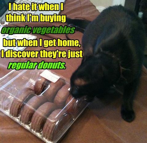 Cats black cat donuts vegetables - 8331784704