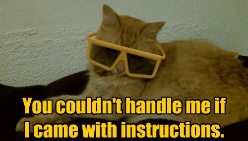 Cats,cool,glases,tabby