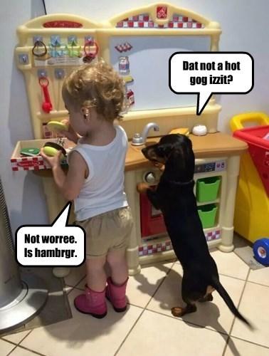 Cheezburger Image 8331821056