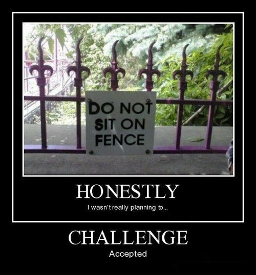 Challenge Accepted,bad idea,fence,funny