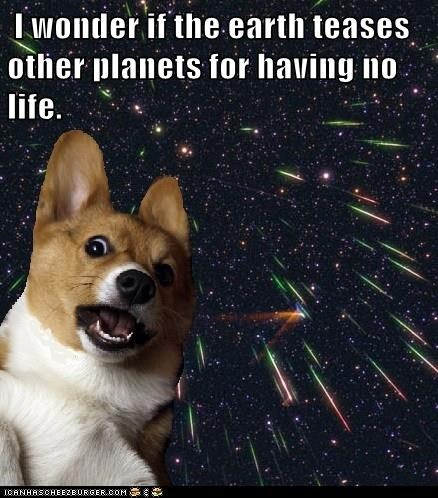 dogs corgi space earth - 8332811776
