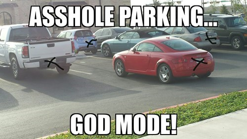 parking,parking like a douche