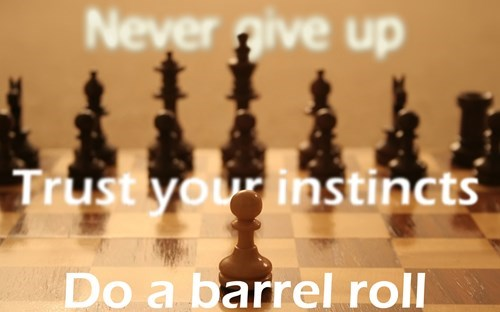chess do a barrel roll Star Fox - 8332904192