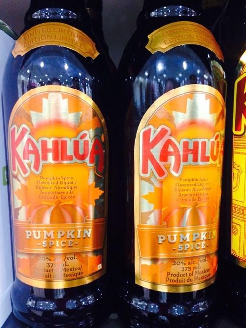 fall kahlua funny liquor pumpkins after 12 g rated