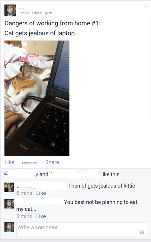 boyfriend pets cute relationships Cats - 8333697792