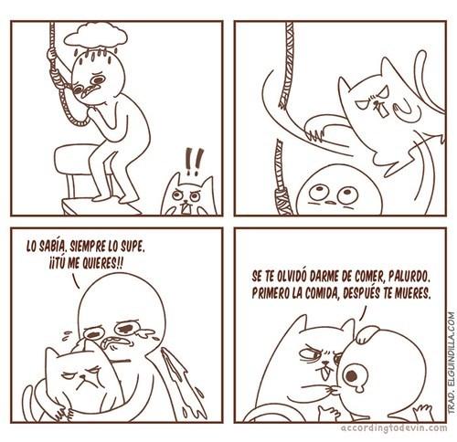 gatos bromas viñetas animales - 8333983744