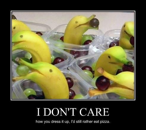 dolphins funny snacks pizza - 8334057984