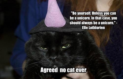 unicorn Cats black cat - 8334635776
