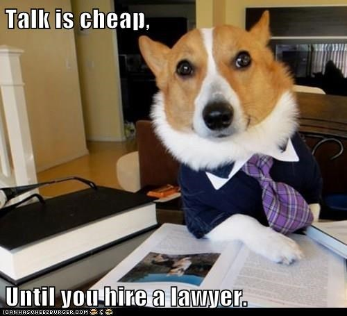 dogs lawyer talk hire caption cheap - 8335039488