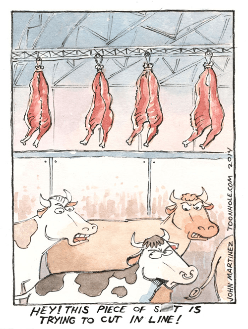 cows meat web comics - 8335100416