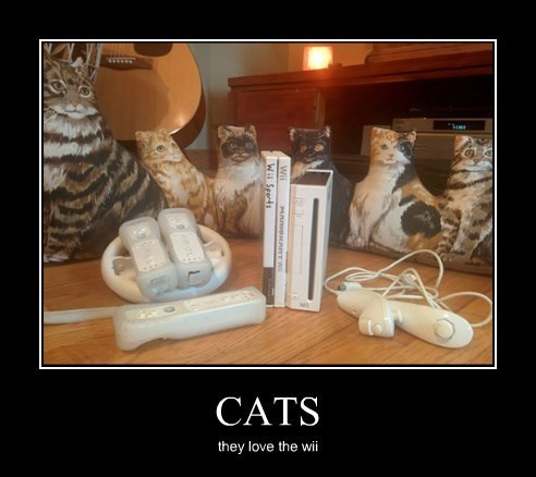Cats,funny,video games,wii