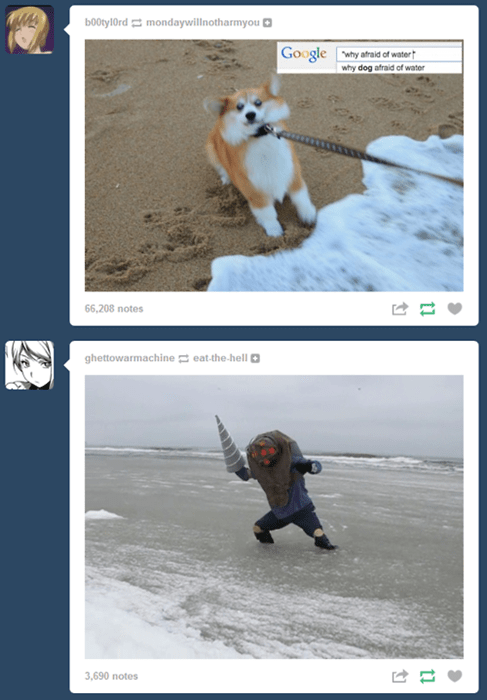 tumblr juxtaposition coincidence - 8335295488