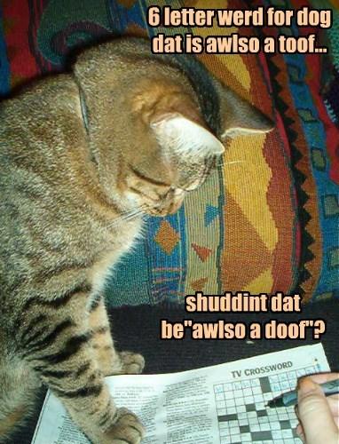 Cheezburger Image 8335920384